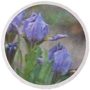 Round Beach Towel featuring the photograph Dwarf Iris With Texture by Patti Deters