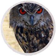 Eagle Owl Round Beach Towel by Anthony Sacco