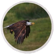 Eagle With Prey Round Beach Towel