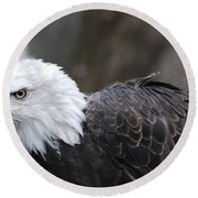 Eagle With Ruffled Feathers Round Beach Towel by DejaVu Designs