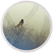Eastern Phoebe Lacassine Pool  Lacassine Nwr Round Beach Towel