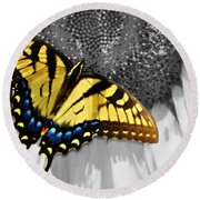 Eastern Tiger Swallow Tail  Round Beach Towel