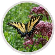Round Beach Towel featuring the photograph Eastern Tiger Swallowtail On Joe Pye Weed by Neal Eslinger