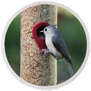 Eastern Tufted Titmouse  Round Beach Towel by Carol Groenen
