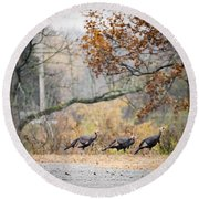 Eastern Wild Turkey  Round Beach Towel