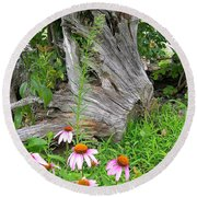 Echinacea Stumpage Round Beach Towel