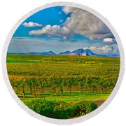 Edna Wineries Ca Round Beach Towel by Richard J Cassato
