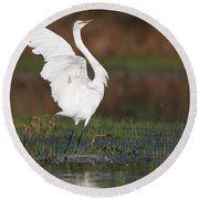 Egret Dancing Round Beach Towel