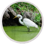 Egret Fishing Round Beach Towel