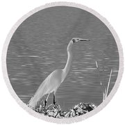 Round Beach Towel featuring the photograph Egret In White Satin by Frank Bright