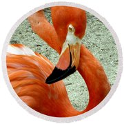 Figure Eight Flamingo Round Beach Towel