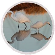 Elegant Big And Small Great White And Snowy Egrets Round Beach Towel