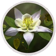 Elegant White Columbine Round Beach Towel