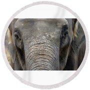 Elephant Close Up 1 Round Beach Towel