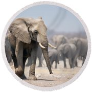 Elephant Feet Round Beach Towel