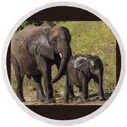 Elephant Mom And Baby Round Beach Towel