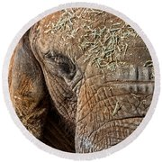 Elephant Never Forgets Round Beach Towel