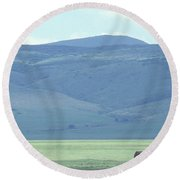 Elephant On Plains Round Beach Towel