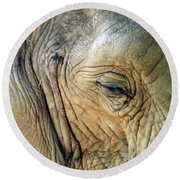 Elephant One  Round Beach Towel