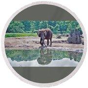 Elephant Three Round Beach Towel by Joyce  Wasser