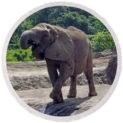 Elephant Two Round Beach Towel