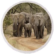 Elephants Have The Right Of Way Round Beach Towel