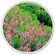 Elevated View Of Fireweed Chamerion Round Beach Towel