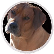 Round Beach Towel featuring the photograph Eli by Mim White