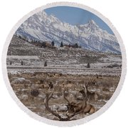 Elk And The Grand Tetons Round Beach Towel