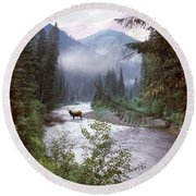Elk Crossing 2 Round Beach Towel
