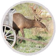 Elk Drawn Carriage Round Beach Towel