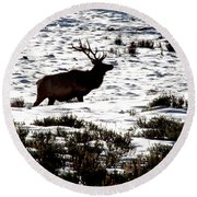 Round Beach Towel featuring the photograph Elk Silhouette by Sharon Elliott