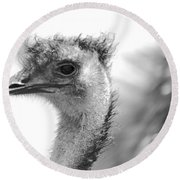 Emu - Black And White Round Beach Towel by Carol Groenen