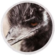 Emu Closeup Round Beach Towel