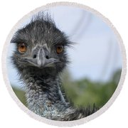 Emu Gaze Round Beach Towel by Belinda Greb