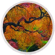 Enchanted Canopy Round Beach Towel
