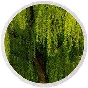 Enchanting Weeping Willow Tree Wall Art Round Beach Towel