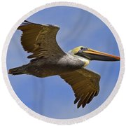 Round Beach Towel featuring the photograph Endangered No More by Gary Holmes