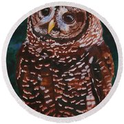 Endangered - Spotted Owl Round Beach Towel by Mike Robles