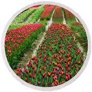 Endless Waves Of Tulips Round Beach Towel