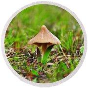 Entoloma Mushroom Round Beach Towel