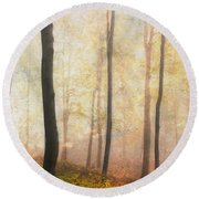 Equilibrium Of The Forest In The Mist Round Beach Towel