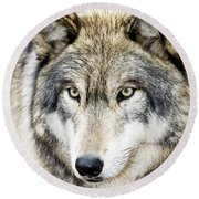 Round Beach Towel featuring the photograph Essence Of Wolf by Gary Slawsky