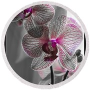 Ethereal Orchid Round Beach Towel