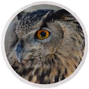 Eurasian Owl Round Beach Towel by Debby Pueschel