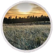 Evening Grasses In The Black Hills Round Beach Towel
