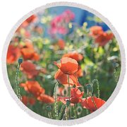 Evening Lights The Poppies Round Beach Towel