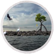 Round Beach Towel featuring the photograph Everglade Scene by Dan Friend