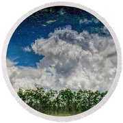 Reflected Everglades 0203 Round Beach Towel