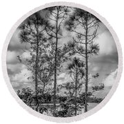 Everglades 0336bw Round Beach Towel